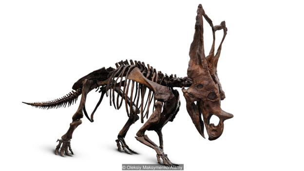 Dinosaurs actually lived quite recently (Credit: Oleksiy Maksymenko/Alamy)