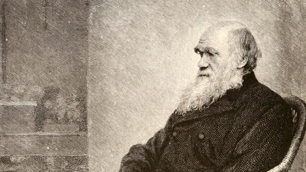 Charles Darwin showed that all life has evolved from a simple common ancestor